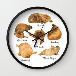 the furnished walrus Wall Clock