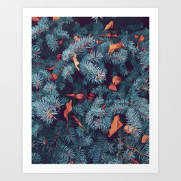 Frosty trees - Winter is here Art Print