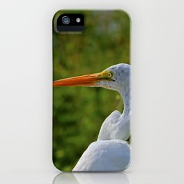 Dawn at Ding I iPhone Case