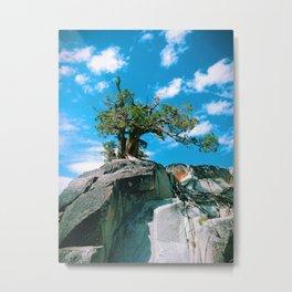 Rock Tree Metal Print