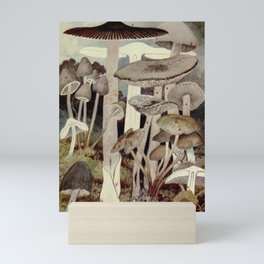 Vintage Mushroom Diagram Mini Art Print