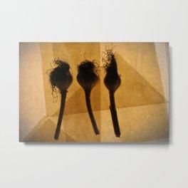 Three heads of garlic  Metal Print