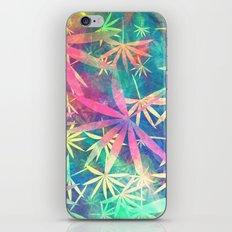 Colorful Nature 02 iPhone & iPod Skin