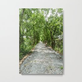 The Solemn Path, Killing Fields, Cambodia Metal Print