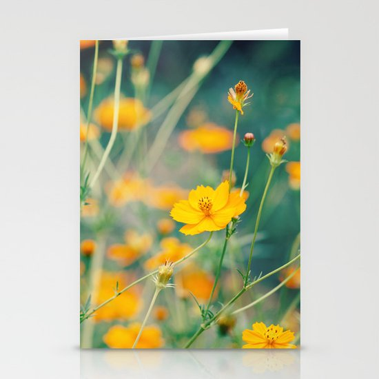 Orange Cosmos Stationery Cards