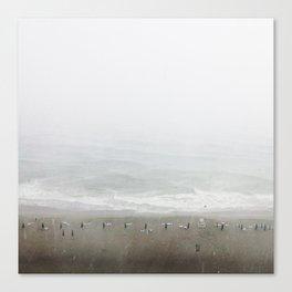 Shoreline Stormline  Canvas Print