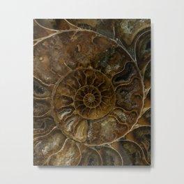 Earth treasures - brown amonite Metal Print