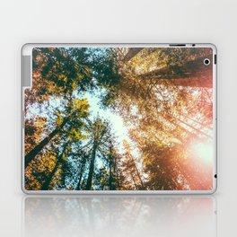 California Redwoods Sun-rays and Sky Laptop & iPad Skin