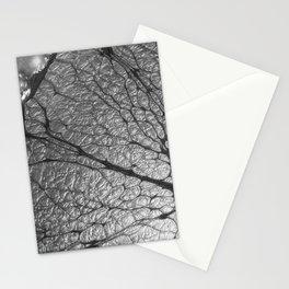 SilverCola Stationery Cards
