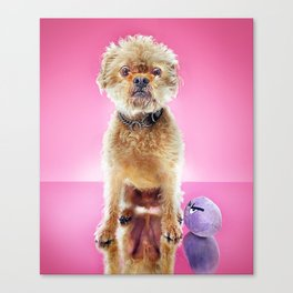 Super Pets Series 1 - Super Cosmo 2 Canvas Print