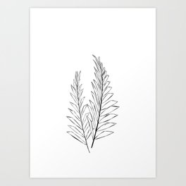Palm print botanical illustration Art Print
