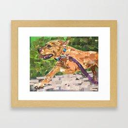 Running with Jonesy Framed Art Print