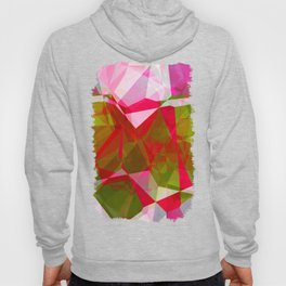 Crape Myrtle Abstract Polygons 2 Hoody