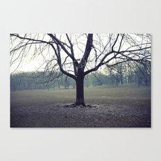 parktree Canvas Print