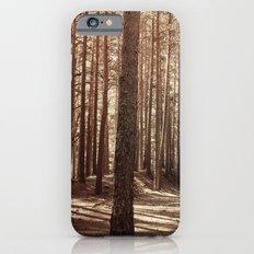 it's autumn iPhone 6s Slim Case