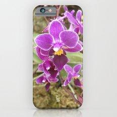 Orchid I Slim Case iPhone 6s