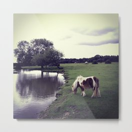 Horse by a moat Metal Print