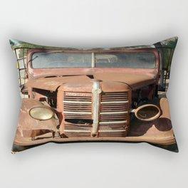 I need a new Light ☺ Rectangular Pillow