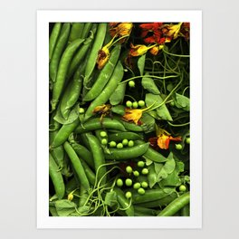 Nasturtiums and Peas Art Print