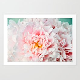 Peony Flower Photography, Pink Peony Floral Art Print Nursery Decor A happy life - Peonies 2 Art Print