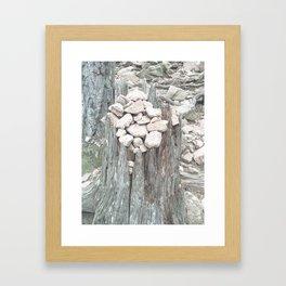 Stones on tree stump Framed Art Print