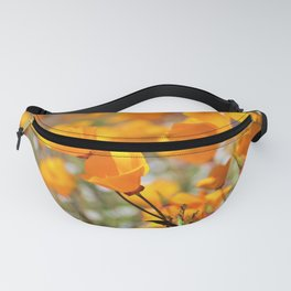 California Gold Poppies by Reay of Light Photography Fanny Pack