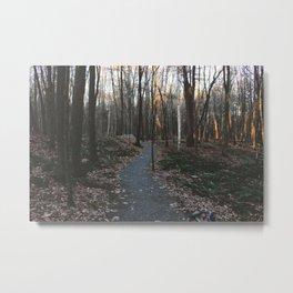 Forest Trail LX Metal Print