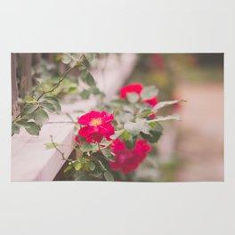 Summer Roses Rug