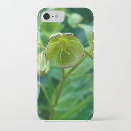 Helleborus Foetidus iPhone Case