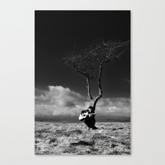 The Player 2 Canvas Print