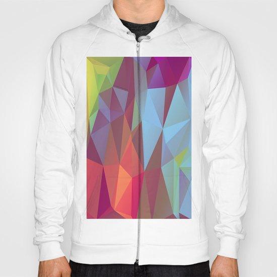 Vertices 9  Hoody