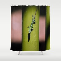 lizard Shower Curtains featuring Lizard by Kristin H. Rommel