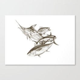 Saltwater big game Canvas Print
