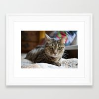 soviet Framed Art Prints featuring Soviet Cat by Colter Freeman