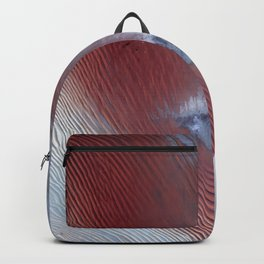 Empty Quarter Backpack