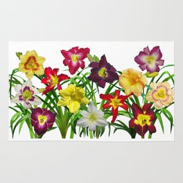 Display of daylilies I Rug