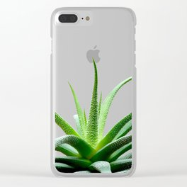 Succulents - Haworthia attenuata - Plant Lover - Botanic Specimens delivering a fresh perspective Clear iPhone Case