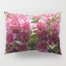 Sedum Flowers and the Ant Pillow Sham