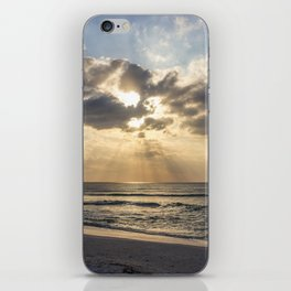 Delnor-Wiggins Pass Sate Park Sunset iPhone Skin