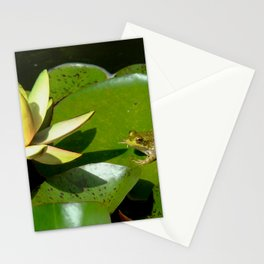 The Lily and the Frog Stationery Cards