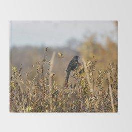 Blackbird in Autumn Light Throw Blanket