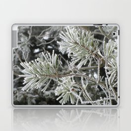 Frosted pine Laptop & iPad Skin