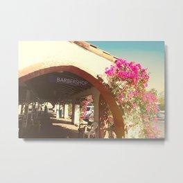 Palm Springs Beauty Metal Print