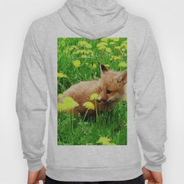 Baby Red Fox in Green Field With Yellow Flowers Hoody