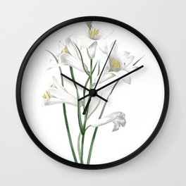 HIGHEST QUALITY botanical poster of Daylily Wall Clock