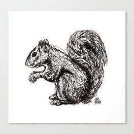 Woodland Creatures: Squirrel Canvas Print