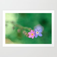 One Girl-One Boy, Forget-me-not Art Print