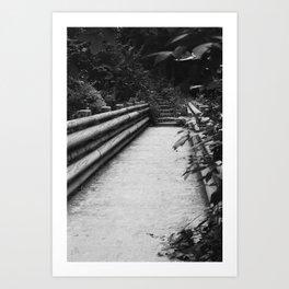 Park Bridge, in Black and White Art Print
