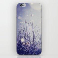 winter solstice iPhone & iPod Skin