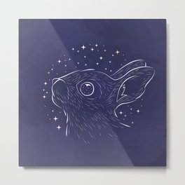 Star Gazer Metal Print